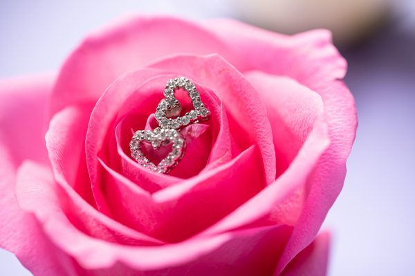 silver small earrings in heart shape with cubic zircons, photographed on a rose