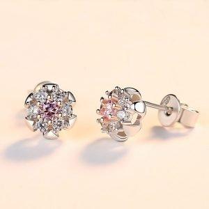 """Silver earrings """"Variety"""""""